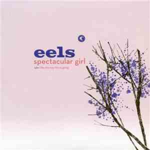 Eels - Spectacular Girl download mp3 flac